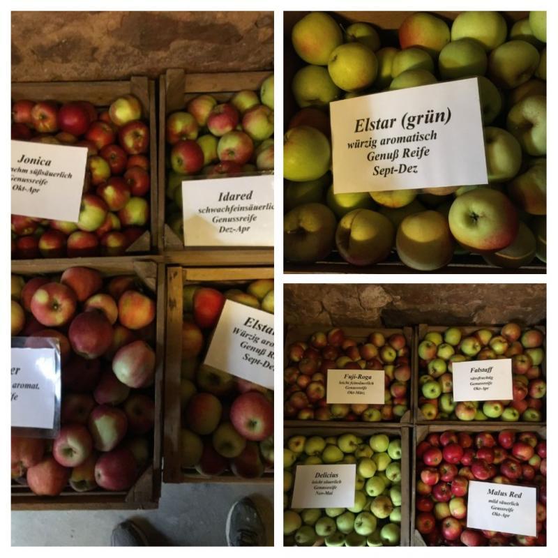Äpfel zu verkaufen 1kg/1,20 €Elstar,Jona ...